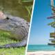 Camp USA Road Trip: South Florida, Everglades and Florida Keys